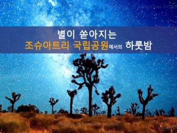 별이 쏟아지는 조슈아트리 국립공원에서의 하룻밤